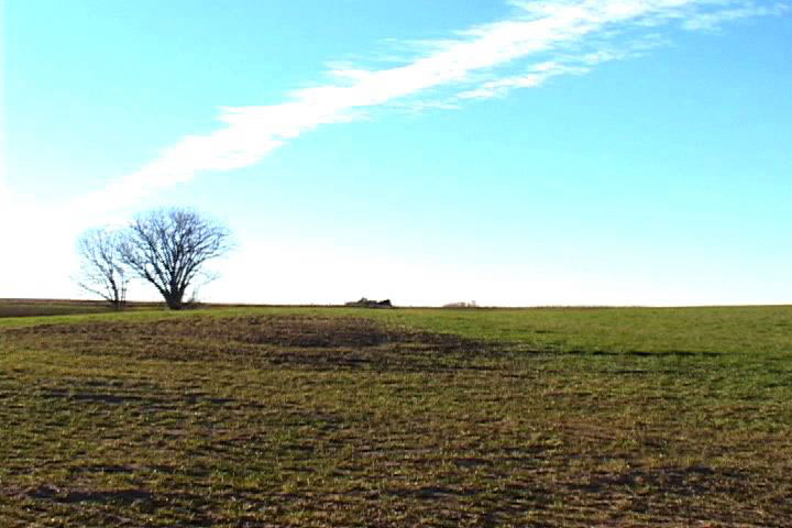 [photograph: Field Near Dodge City, photograph by Dave Gunn, Lawrence, KS; copyright 2004]